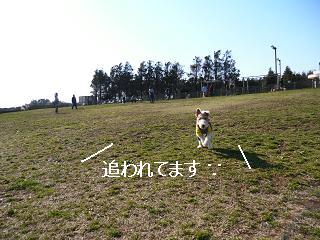 CIMG3837-1.jpg