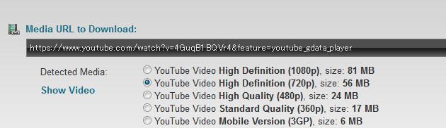 動画音声保存方法6bcf.jpg