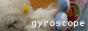 gyroscope03.jpg