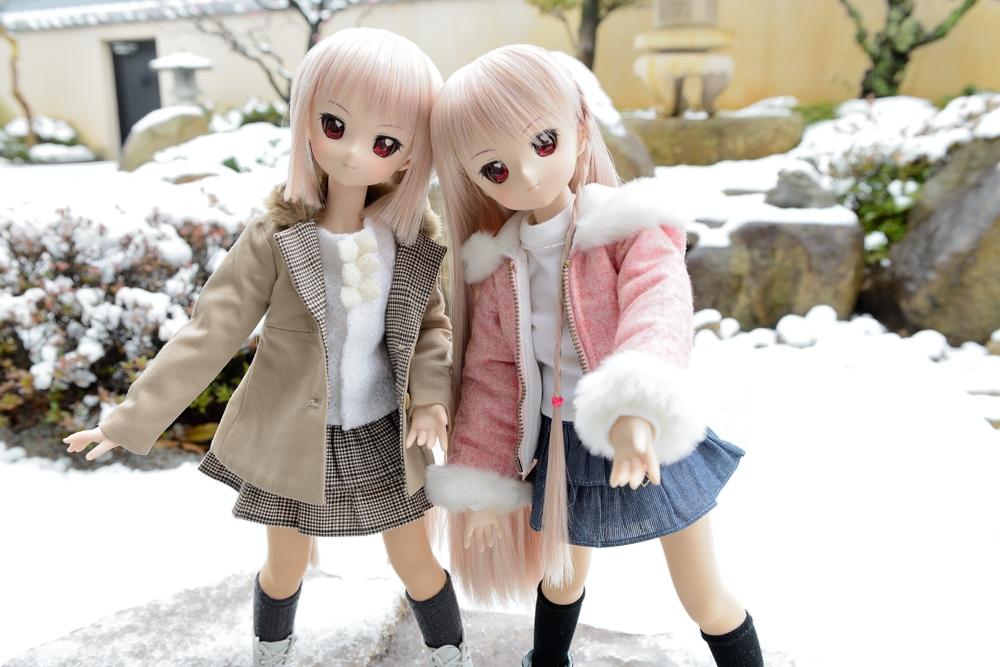 雪が降りました002
