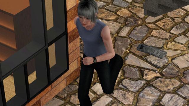 sim485.jpg