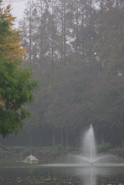 霧の貝柄山公園
