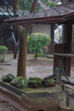 豪徳寺の井戸