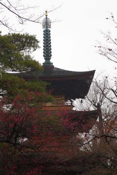豪徳寺の五重塔