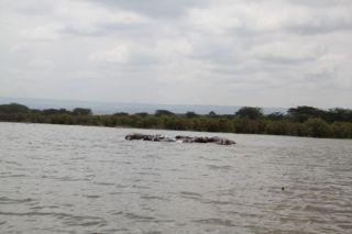 201108kenya - 20111106017
