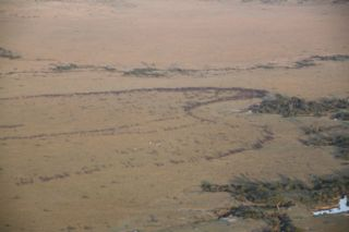 201108kenya - 20111122019
