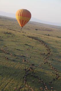 201108kenya - 20111126009