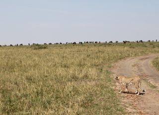 201108kenya - 20111202015