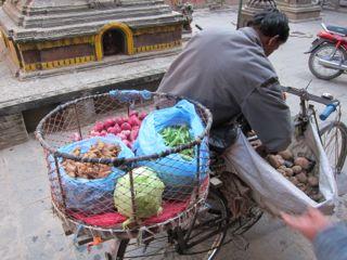 2011ネパール - 20120117016