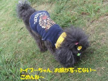 001_convert_20110817231634.jpg