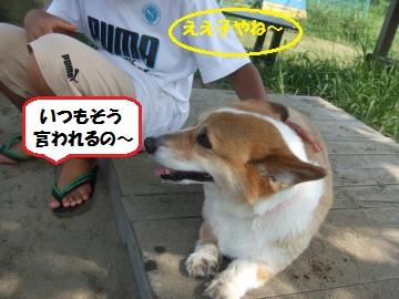 003_convert_20110821231932.jpg