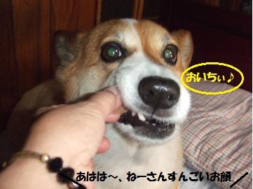 012_convert_20110821232144.jpg