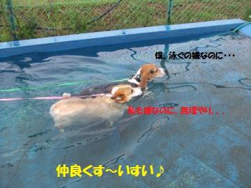 017_convert_20110825230851.jpg