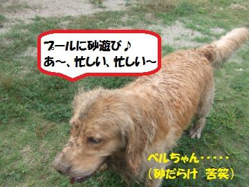 021_convert_20110817232101.jpg