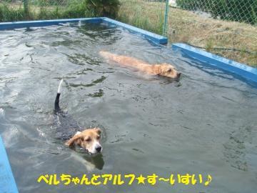 027_convert_20110817232241.jpg