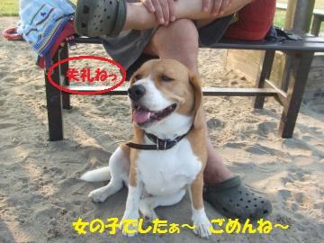 036_convert_20110817002247.jpg
