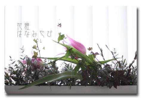 6_edited-1.jpg
