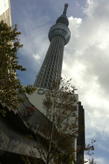 2012101106.jpg