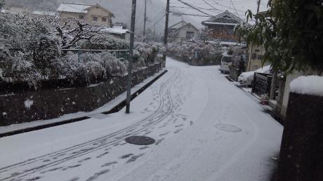 2013/1/14の雪(2)
