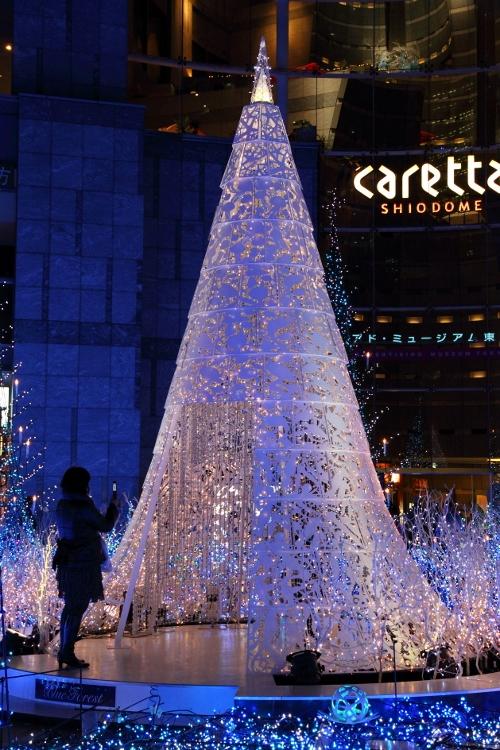 caretta-irumi_0013f.jpg
