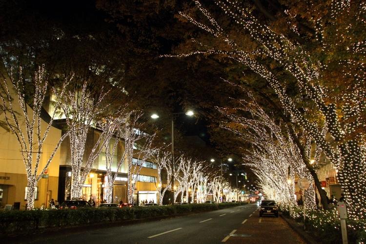 harajyuku-irumi_0019f.jpg