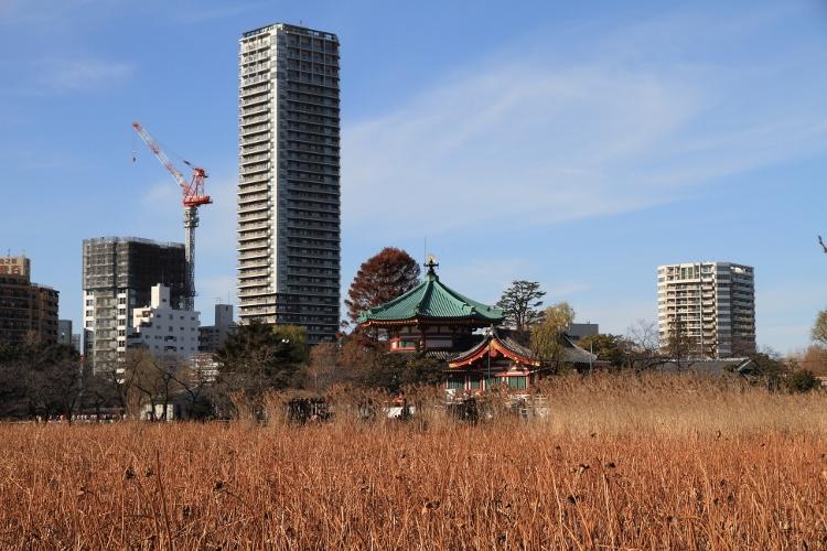 shichifukuji_0009f.jpg