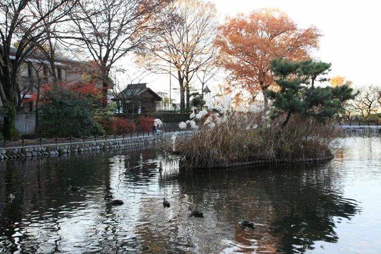 shimoaka_0034f.jpg