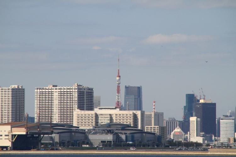 wakasu_0012f.jpg