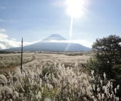 忍野~富士山4