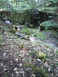 20110816山へ滝