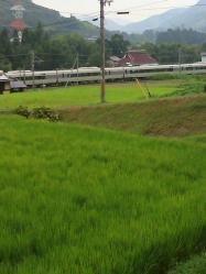 20110818電車