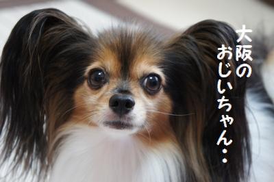 030_20110919190323.jpg