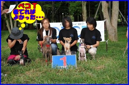 DSC_9865_20111126000939.jpg