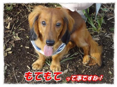 11_16_10_convert_20111116204903.jpg