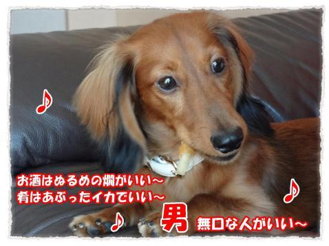 11_1_1_convert_20111101223018.jpg