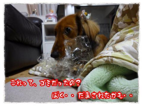 2011_12_15_6+-+繧ウ繝斐・_convert_20111215234659
