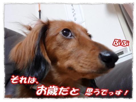2011_10_11_11_convert_20111011214453.jpg
