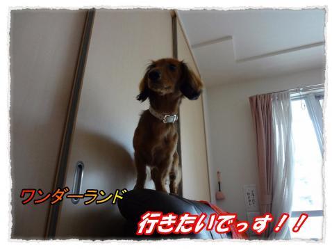 2011_10_11_3_convert_20111011184704.jpg