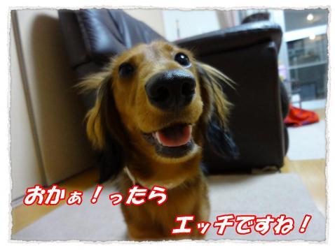 2011_10_12_1_convert_20111012225647.jpg