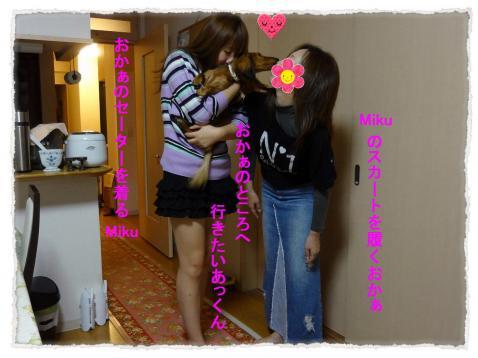 2011_10_15_9_convert_20111015233558.jpg