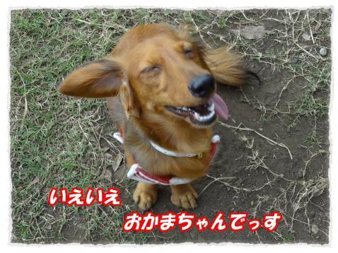 2011_10_19_2_convert_20111019190914.jpg