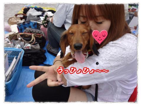 2011_10_1_3_convert_20111001221858.jpg