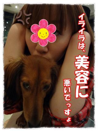 2011_10_20_3_convert_20111020232918.jpg