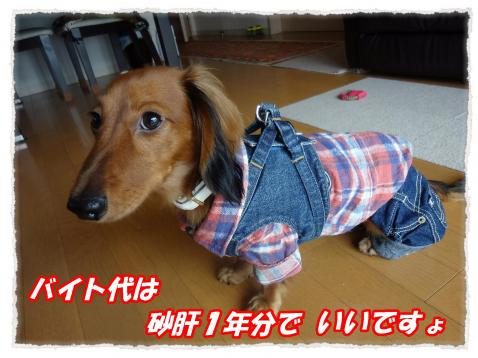 2011_10_22_1_convert_20111022221451.jpg