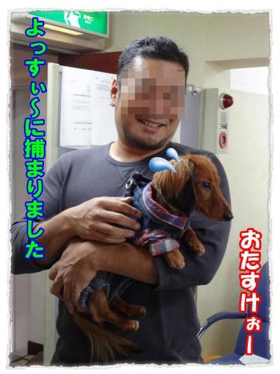 2011_10_22_3_convert_20111022221537.jpg