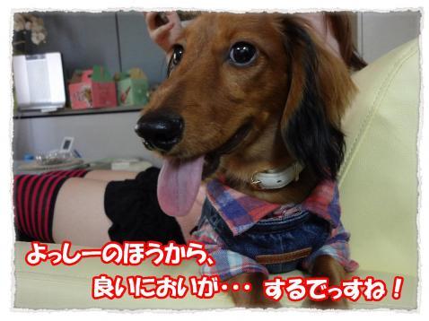 2011_10_22_9_convert_20111022222941.jpg