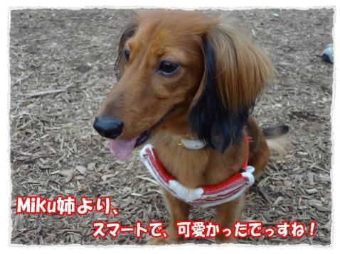 2011_10_23_10_convert_20111023224207.jpg