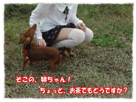 2011_10_23_11_convert_20111023224234.jpg