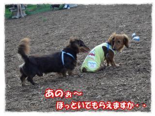2011_10_23_1_convert_20111023223746.jpg