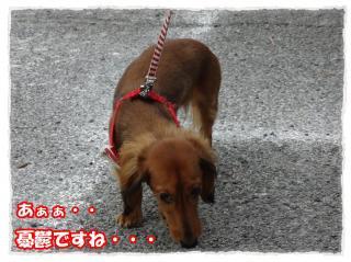 2011_10_23_5_convert_20111023223943.jpg